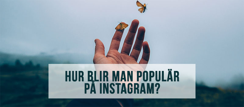hur blir man populär på instagram